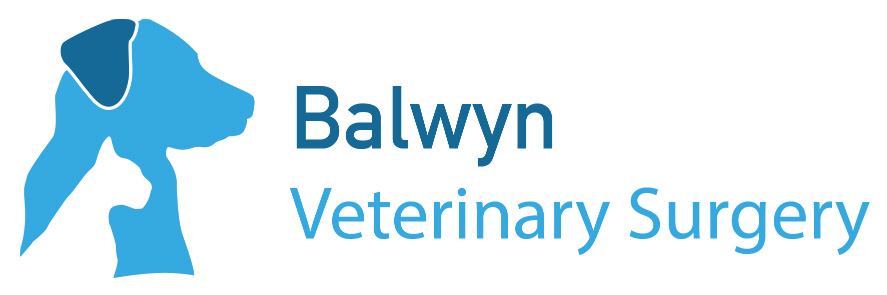 Balwyn Veterinary Surgery